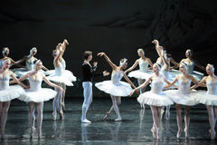 The prince asks Ojta for forgiveness-The last scene of Swan Lake-ballet Swan Lake Royalty Free Stock Photos