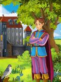 The prince- castles - knights and fairies - Manga style- illustration for the children. The happy and colorful illustration for the children Royalty Free Stock Images