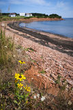 Prince Edward Island coastline Stock Photo