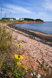 Prince Edward Island coastline Stock Photography