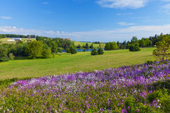 Prince Edward Island Countryside Royalty Free Stock Image