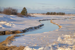 Prince Edward Island Winter Stream Royalty Free Stock Image