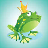 Prince frog. Cute little green frog prince waiting to kiss a lucky princess Stock Photography