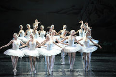 The prince and Ojta was in the middle of the swans protection-The last scene of Swan Lake-ballet Swan Lake Stock Image