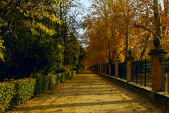 Prince Park in Aranjuez Stock Photography