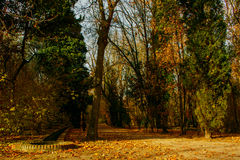 Prince Park in Aranjuez royalty free stock images