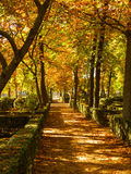 Prince Park in Aranjuez Stock Images