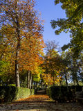 Prince Park in Aranjuez Stock Photography