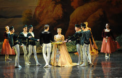 The prince received a gift-ballet Swan Lake Stock Images