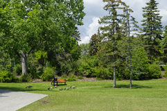 Free Prince S Island Park In Calgary, Alberta Canada. Stock Images - 77047564