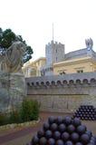 Prince's Palace,Monaco Stock Images