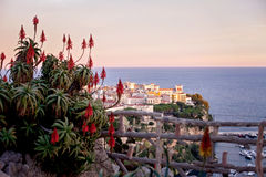 Prince's Palace in Monaco, view from the exotic gardens Stock Photos