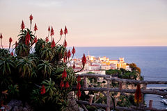 Prince's Palace in Monaco, view from the exotic gardens Stock Photography