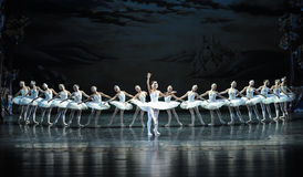 Prince Siegfried falls in love with the Swan Princess Ojta-ballet Swan Lake Stock Image