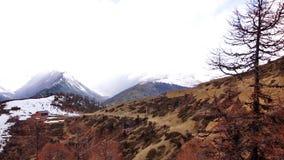 Prince snow mountain  1. The top of the mountain snow all year round, prince snow mountain Stock Images