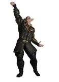 Prince Sorcerer de lutin illustration libre de droits