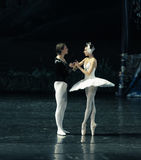 The prince and the Swan fall in love at first sight-ballet Swan Lake Stock Photos