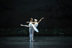 The prince and the swan of the lingering-ballet Swan Lake Royalty Free Stock Photography