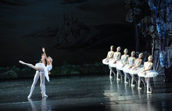 The prince and the swan of the lingering-ballet Swan Lake Royalty Free Stock Image