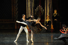 The prince was enchanted with the black swan-The prince adult ceremony-ballet Swan Lake Stock Photography