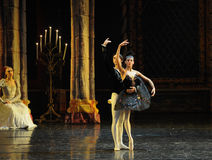 The prince was enchanted with the black swan-The prince adult ceremony-ballet Swan Lake Stock Image