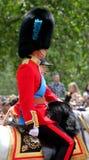 Prince William The Duke de Cambridge Images stock