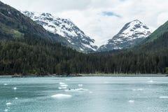 Prince William Sound de l'Alaska Image stock