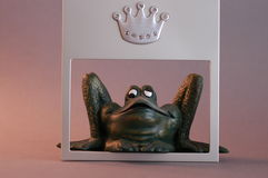 The princely one. A very princely looking frog peering out from behind a silver picture frame stock photos
