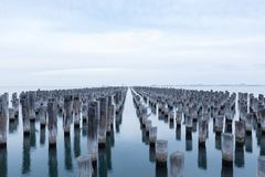 Princes Pier old pylons, Melbourne, Australia stock photography