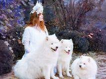 Princesa de la nieve de la chica joven en vestido blanco largo con tres samoyedos al aire libre foto de archivo