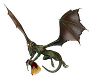 Princesa del dragón ilustración del vector