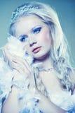 Princesa del invierno Fotos de archivo libres de regalías