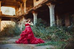 Princesa feericamente nas ruínas Imagem de Stock