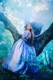 Princesa na floresta mágica Fotos de Stock