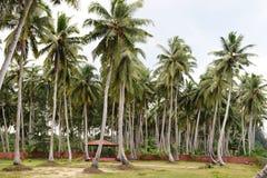 Princesa Resorts do mar Foto de Stock