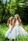 Princesas de Litte que llevan los vestidos del blanco en bosque fotografía de archivo