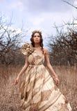 princess золота платья стоковые изображения rf