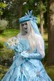Princess льда Стоковые Изображения RF