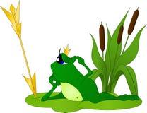 Princess żaba zielony kolor z niebieskimi oczami Zdjęcia Royalty Free