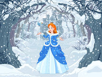 Princess and Bird. Illustration of princess with bird close to Magic Winter Castle Royalty Free Stock Image