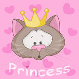 Princess Cat Stock Photo