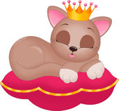 Princess cat on pillow. An illustration featuring a cat with a crown lying on a pillow Stock Image