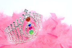 Princess Crown. With jewels and pink feathers Stock Images