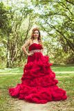 Princess with crown in cloudy red dress Royalty Free Stock Images