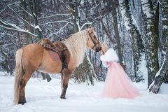 Princess in crown with horse in winter. Fairy tale. Romantic fanatsy. Princess in crown with horse in winter. Fairy tale royalty free stock photos