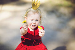 Princess and dandelions Stock Images