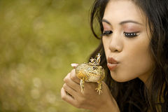 Princess and the Frog. Beautiful princess about to kiss her frog prince Stock Image
