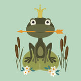Princess frog Stock Photos