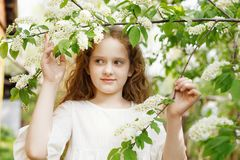 Princess girl breathing a apple flower royalty free stock photography