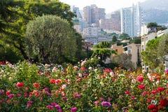 Princess Grace Rose Garden, Monaco. Views of Monaco from the Princess Grace Rose Garden royalty free stock images